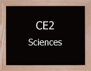 Sciences CE2