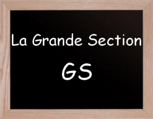 Grande section de maternelle