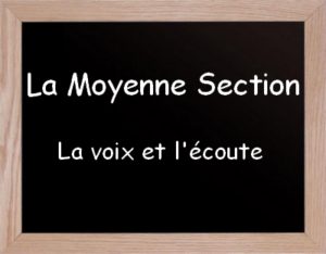 Musique moyenne section